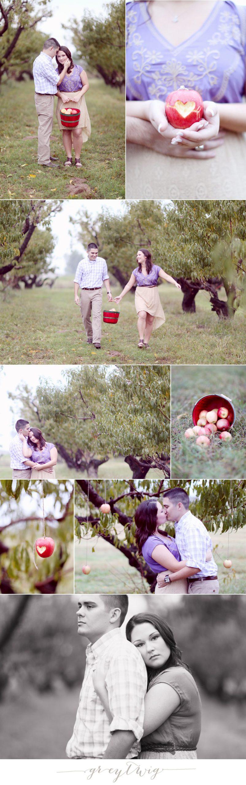 GreyTwig_Engagement